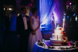 Zimowy ślub w Prudniku - Ślub w Kościele w Lasku, Wesele pod Wieżyczką, Plener na Zamku w Mosznej 62
