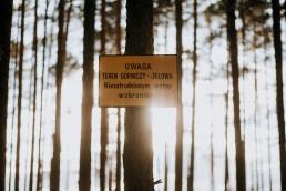 Kasia i Paweł - Magiczny leśny plener - wesele w hotelu Szara Willa 126