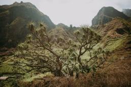 Wyspy Zielonego Przylądka - moje wakacje! 116