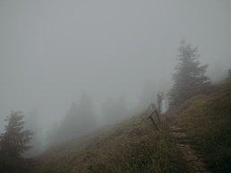 plener ślubny we mgle