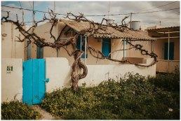 Malta zimą - wiosna w zimie - Valetta i Gozo zimową porą 24